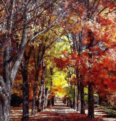 autumn-gc72a75a00_1920web